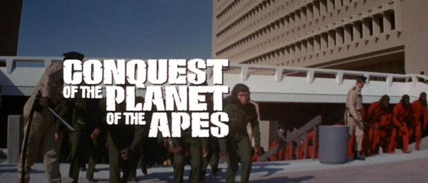 Planeta majmuna (4)