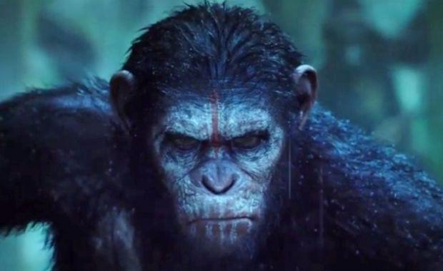 Planeta majmuna (6)
